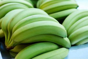 Chuối tiêu - Từ lá đến quả đều là vị thuốc hay chữa nhiều bệnh