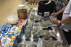 4kg cần sa ở kiện hàng thực phẩm từ California về Tân Sơn Nhất