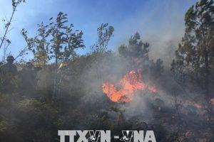Nghệ An: Thăm hỏi, động viên gia đình nạn nhân tử vong khi dập lửa tại rừng thông