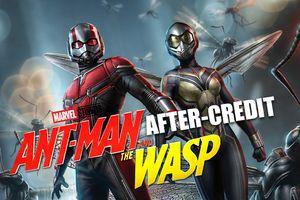'Ant-man and the Wasp' có mấy after-credit, liên quan đến 'Infinity War' và 'Avengers 4' không?
