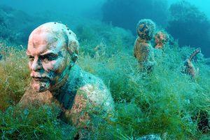 Khám phá những bảo tàng dưới nước mát lạnh ngày hè