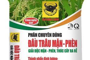 Tại sao lúa bị ngộ độc hữu cơ?