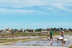 Nam Định: Nắng nóng 40 độ C vẫn mong trời 'đổ thêm lửa'