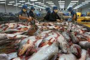 Cuộc chiến thương mại Mỹ - Trung: Nông nghiệp Việt chịu tác động gì?