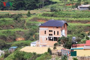 Ít nhất 4 biệt thự xây dựng không phép trên đất rừng Đà Lạt