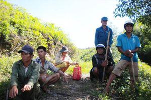 Thất thoát 1.000 ha rừng ở Quảng Trị