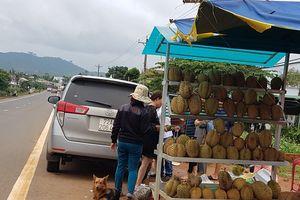 Hạt sầu riêng đang lên 'cơn sốt' ở Lâm Đồng