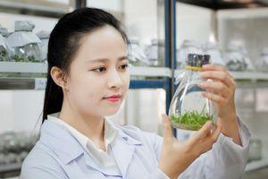 Đại học Quy Nhơn – ngôi trường ngày càng hấp dẫn, thu hút sinh viên
