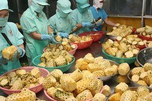 Để sản xuất và xuất khẩu rau quả tăng trưởng bền vững