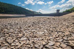 Hạn hán kéo dài, Anh cấm 7 triệu dân dùng vòi phun nước