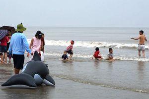 Bão số 3 sắp đổ bộ, du khách vẫn vô tư tắm biển Sầm Sơn