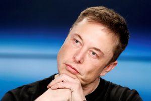 Tỉ phú Elon Musk xin lỗi vì xúc phạm thợ lặn Anh