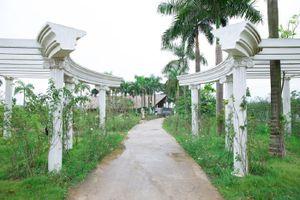 Sắp có công viên hoa hồng 22ha tại Hà Nội