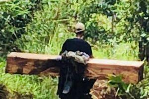 Giáp mặt đoàn 'lâm tặc' chở gỗ trong rừng sâu
