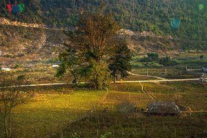 Đến Sơn La, bạn nhất định phải thăm những nơi này