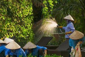 Nông dân hưởng lợi từ chính sách sử dụng lao động địa phương của doanh nghiệp
