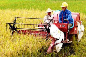 'Tam nông' khởi sắc sau 10 năm thực hiện Nghị quyết 26