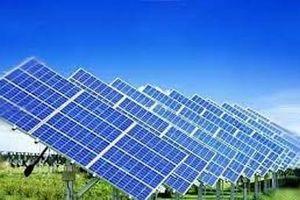 Dự kiến xây nhà máy điện mặt trời trên 1.150 tỷ đồng tại Cà Mau