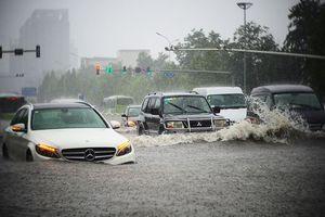 Làm thế nào để tránh mua phải ôtô từng bị ngập nước?