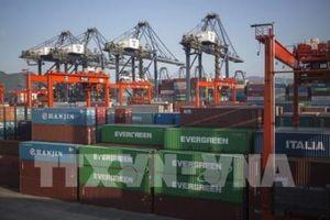 Chuyên gia: Hợp tác đa phương sẽ giúp đẩy lùi bảo hộ thương mại