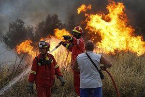 Hy Lạp kêu gọi hỗ trợ quốc tế để đối phó cháy rừng khiến 20 người chết