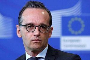 EU sẽ không nhượng bộ trước các cảnh báo thương mại của Mỹ