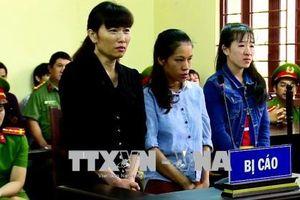 Chủ cơ sở mầm non tư thục Mầm Xanh bị phạt 3 năm tù
