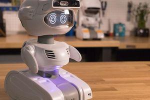 Khám phá robot Misty II giúp việc nhà và văn phòng