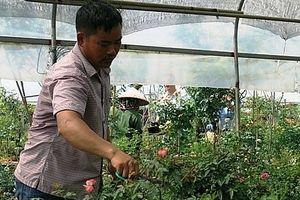 Thu nhập bình quân của người nông dân tăng gần 3 lần