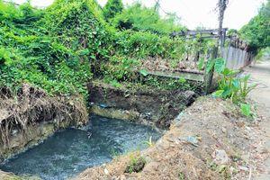 Vụ 'dân 'kêu trời' vì trại nuôi vịt gây ô nhiễm môi trường' ở Tuy Phước, Bình Định: Chủ trại vịt ngoan cố không chấp hành