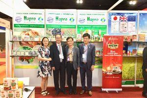 Hapro: Vươn cánh tay xuất khẩu sau cổ phần hóa