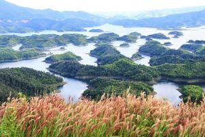 Làm gì để phát triển bền vững tại các vườn quốc gia, khu bảo tồn thiên nhiên?
