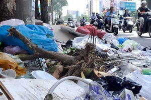Xử lý tình trạng thải rác ra đường phố