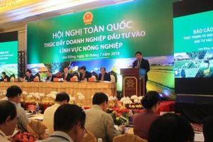 Chủ tịch Minh Phú hiến kế lập khu phức hợp thủy sản 'đáng sống, đáng đầu tư nhất Việt Nam'