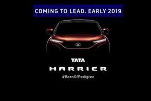 Xe giá rẻ Tata 'sang chảnh' như Land Rover sắp ra mắt