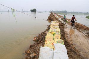 Cận cảnh mức chênh nước đê tả Bùi đe dọa nghìn hộ dân ở Hà Nội
