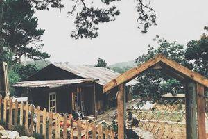 Nhóm bạn dành một năm lột xác căn nhà đổ nát ở Đà Lạt bằng đồ đi xin