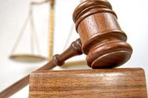 Viện kiểm sát kháng nghị do sai lầm trong áp dụng pháp luật