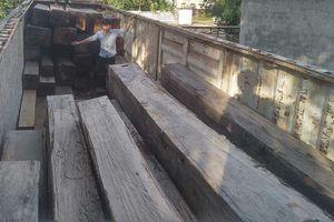 Vụ bắt giữ xe gỗ 'khủng' ở Gia Lai: Khởi tố Phó Giám đốc công ty sở hữu gỗ