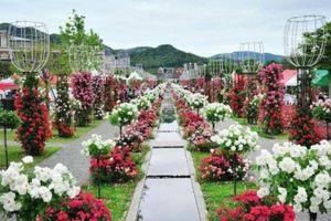 Đầu tư 3 khu du lịch sinh thái và tâm linh tại Hà Nội, Đà Nẵng và Hà Giang