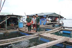 'Bỏ túi' hàng trăm triệu đồng mỗi năm nhờ nuôi cá bớp