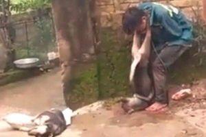 Thanh niên trộm chó sa lưới, bị dân treo chó vào cổ bắt đứng bên đường