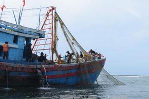 Quảng Ninh phát hiện, ngăn chặn nhiều tàu khai thác thủy sản trái phép