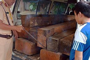 Tài xế không có bằng vẫn ngang nhiên chở gỗ lậu