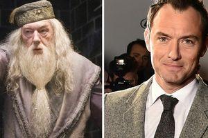 Tài tử Jude Law có đủ khả năng 'gánh' vai lớn – giáo sư Albus Dumbledor ?