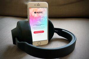 Tim Cook: 'Chúng tôi tạo ra Apple Music không phải vì tiền'