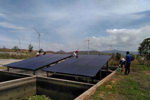 Điện mặt trời chưa sáng vì đâu?: Đầu tư tràn lan sẽ lãng phí tài nguyên