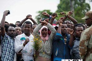 Chính phủ Ethiopia chấm dứt thù địch với phiến quân Oromo