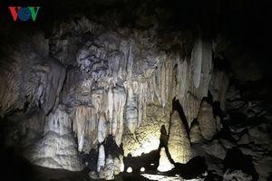 Phát hiện thêm 44 hang động nguyên sơ ở Phong Nha - Kẻ Bàng