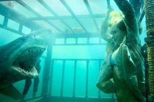 9 bộ phim về cá mập đáng xem nhất trong hơn 30 năm qua